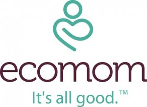 ecomom new logo 300x219 Partners